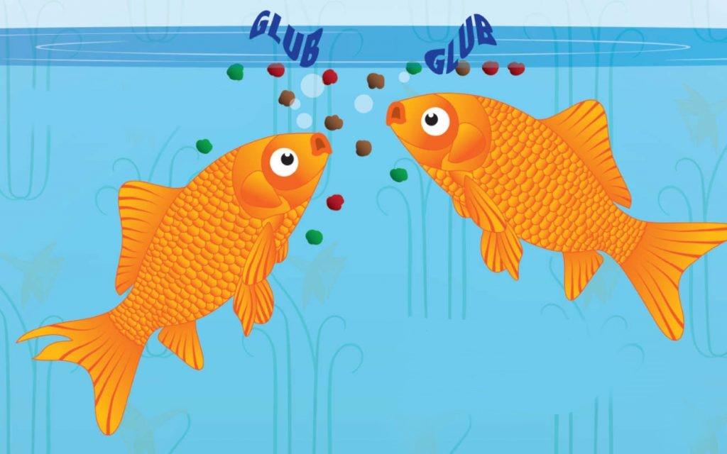 نامگذاری ماهی ها